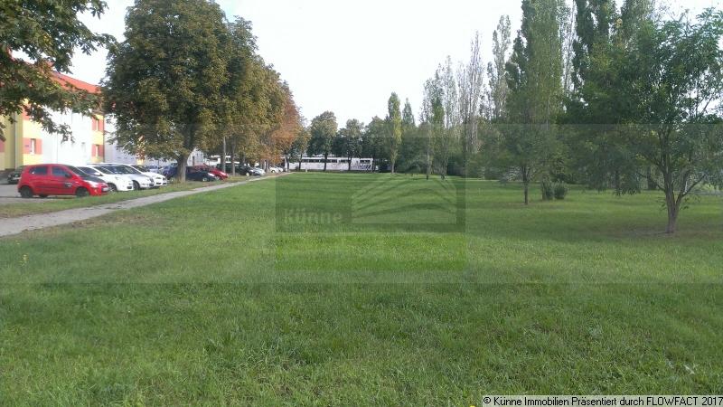 Grundstück, Halle (Ammendorf-Beesen)